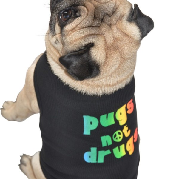"pug clothes ""pug not drugs"""